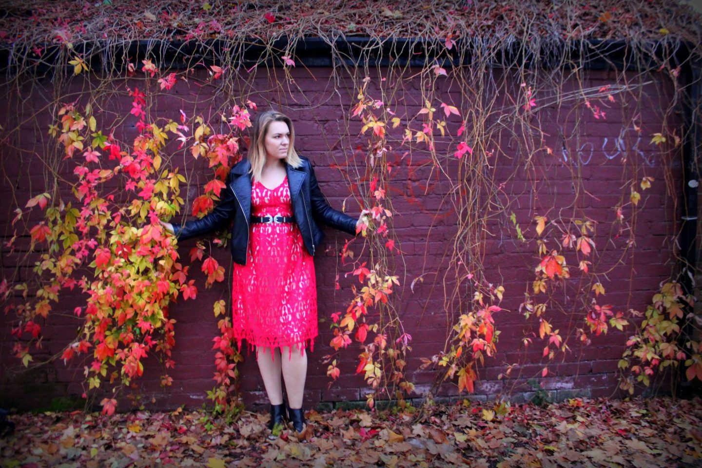 Simply Be Red Lace Fit and Flare